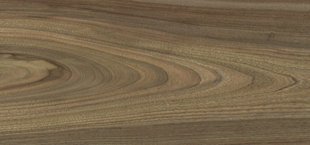 European Walnut (plain)